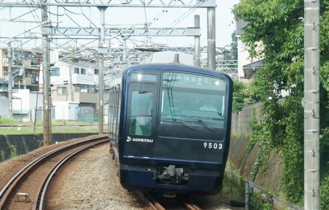 DSC08734 (640x409).jpg